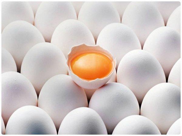 Чрезмерное употребление куриных яиц вредно для здоровья