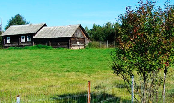 В России бесхозную землю смогут принудительно изымать