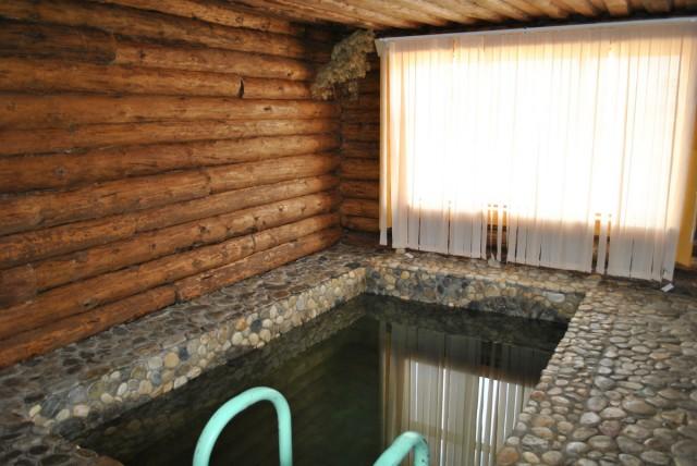Баня с бассейном своими руками