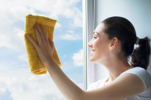 professional-window-cleaning-1024x680