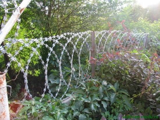 Защищаем двор колючей проволокой — егозой