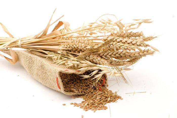 Оборудование для хлебопекарного производства