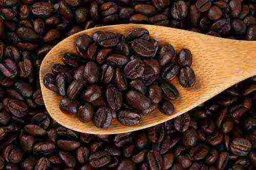 Ambassador – кофе для гурманов, отличающийся уникальной технологией производства